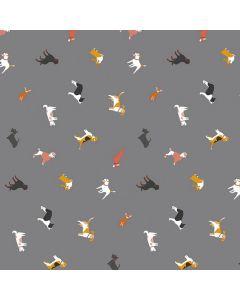 dieren-honden-hond-grijs-pvc-tafelzeil
